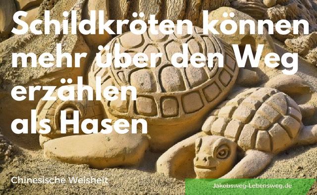 Jakobsweg Zitate Schildkröte