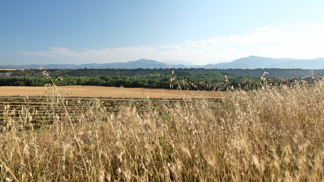 Camino Aragones Weizenkammer