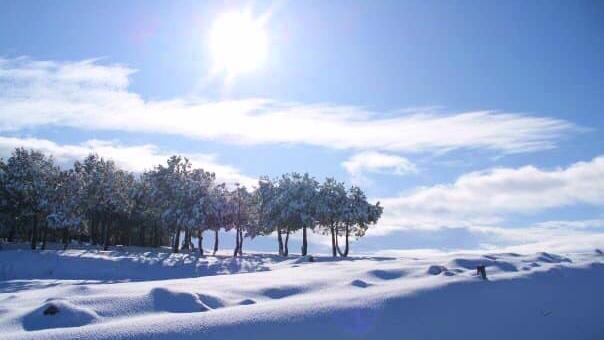 Jakobsweg im Winter Sonne