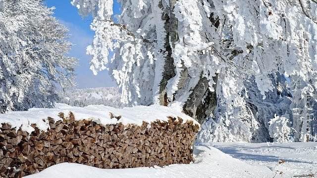 Jakobsweg im Winter