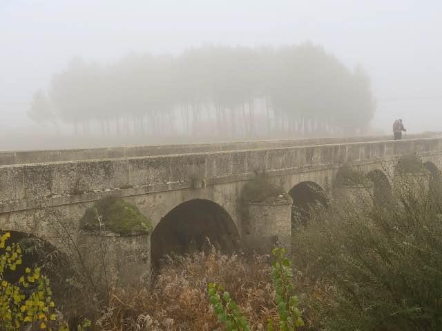 Pilger im Nebel