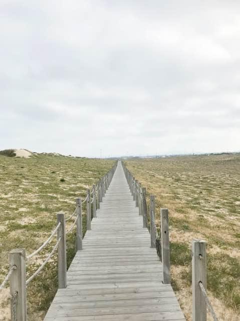 Dünenweg Camino Portugues de la Costa