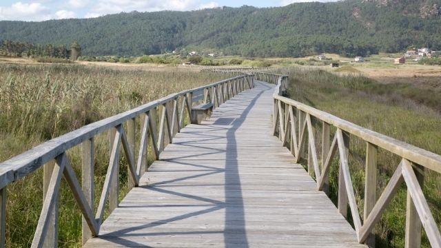 Camino Portugues de la Costa