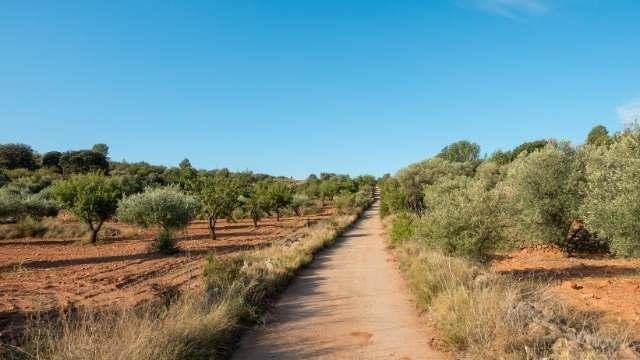 Camino Mozarabe Südspanien